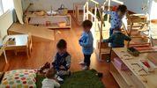Comunidadnido rooterschool
